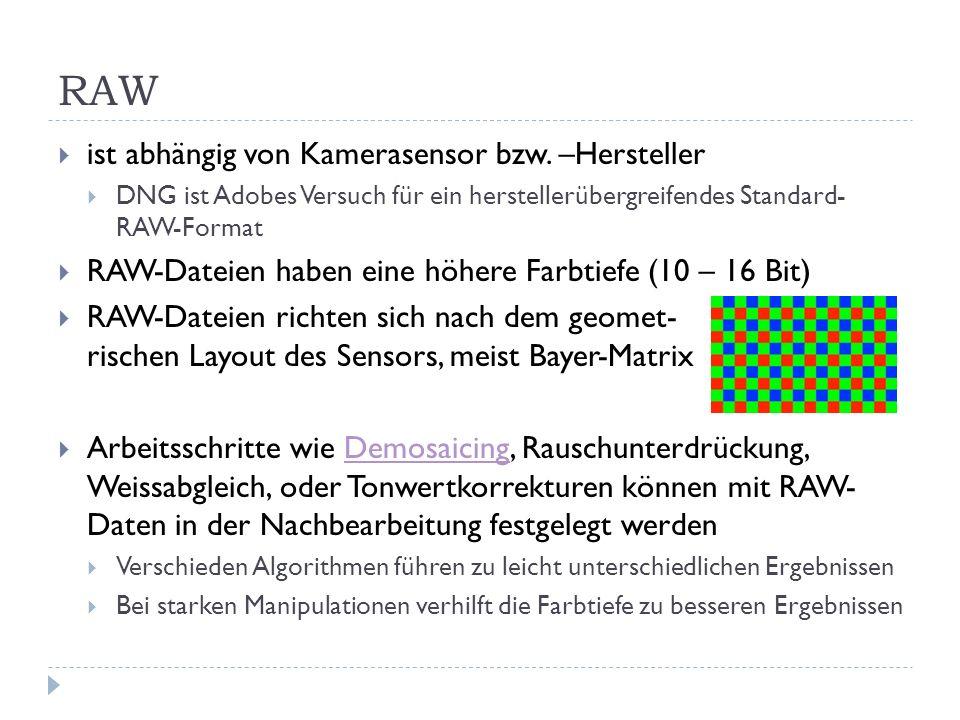 RAW ist abhängig von Kamerasensor bzw. –Hersteller DNG ist Adobes Versuch für ein herstellerübergreifendes Standard- RAW-Format RAW-Dateien haben eine