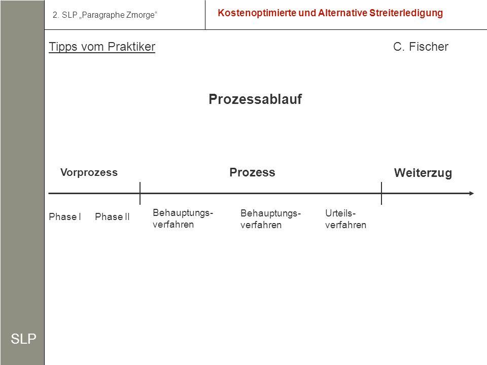 3 Kostenoptimierte und Alternative Streiterledigung SLP 2.