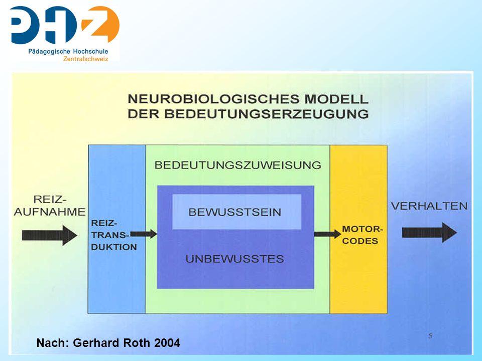 23 Referat Nach: Gerhard Roth 2004