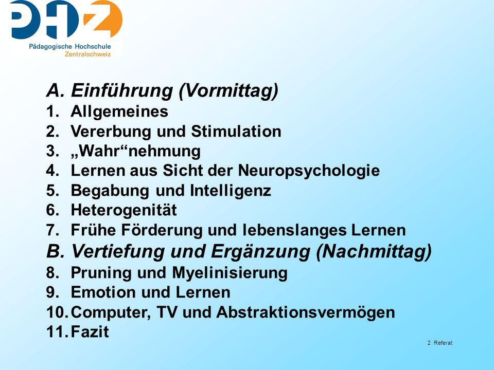 23 Referat 4.Lernen aus Sicht der Neuropsychologie