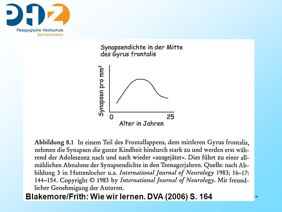 55 Referat Blakemore/Frith: Wie wir lernen. DVA (2006) S. 164