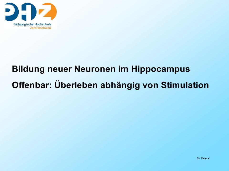 80 Referat Bildung neuer Neuronen im Hippocampus Offenbar: Überleben abhängig von Stimulation