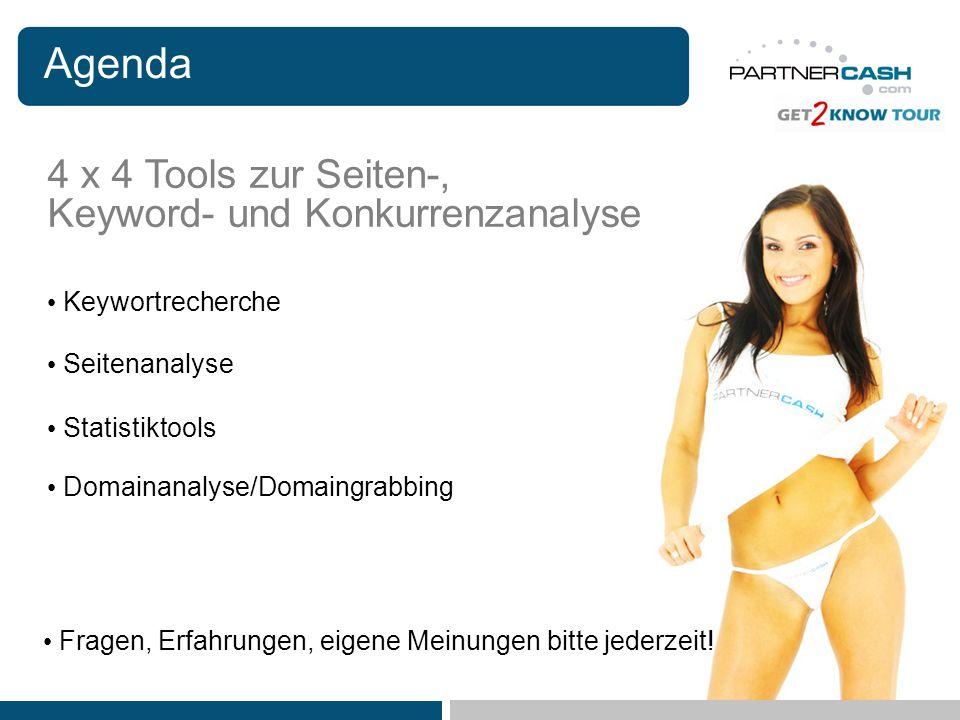 Agenda Keywortrecherche Statistiktools Domainanalyse/Domaingrabbing Seitenanalyse Fragen, Erfahrungen, eigene Meinungen bitte jederzeit! 4 x 4 Tools z