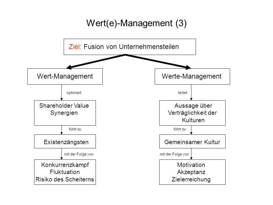 Ziel: Fusion von Unternehmensteilen Wert-Management Werte-Management optimiert Shareholder Value Synergien führt zu Existenzängsten mit der Folge von