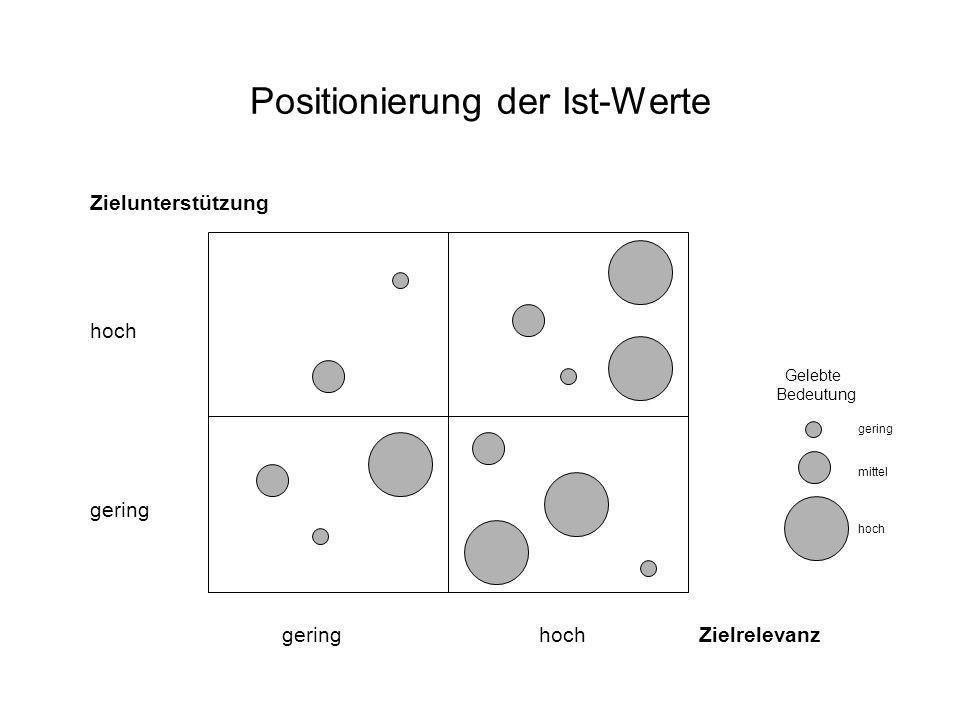 Positionierung der Ist-Werte Zielunterstützung hoch gering gering hoch Zielrelevanz Gelebte Bedeutung gering mittel hoch