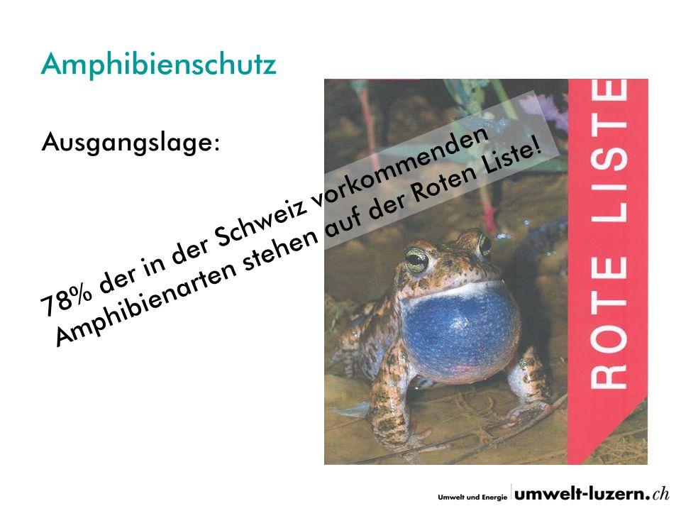 Amphibienschutz Ausgangslage: 78% der in der Schweiz vorkommenden Amphibienarten stehen auf der Roten Liste!