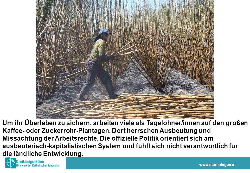 www.sternsingen.at Um ihr Überleben zu sichern, arbeiten viele als Tagelöhner/innen auf den großen Kaffee- oder Zuckerrohr-Plantagen.