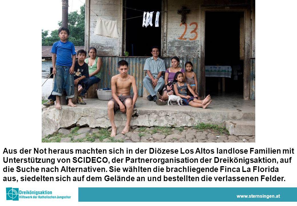 www.sternsingen.at Aus der Not heraus machten sich in der Diözese Los Altos landlose Familien mit Unterstützung von SCIDECO, der Partnerorganisation der Dreikönigsaktion, auf die Suche nach Alternativen.