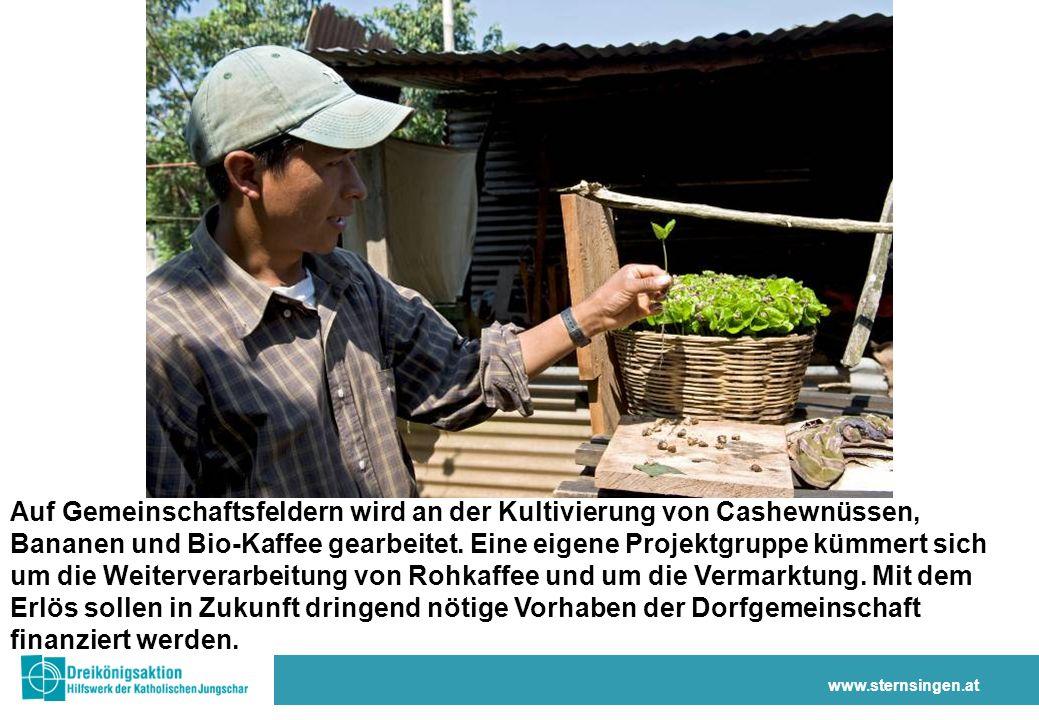 www.sternsingen.at Auf Gemeinschaftsfeldern wird an der Kultivierung von Cashewnüssen, Bananen und Bio-Kaffee gearbeitet.