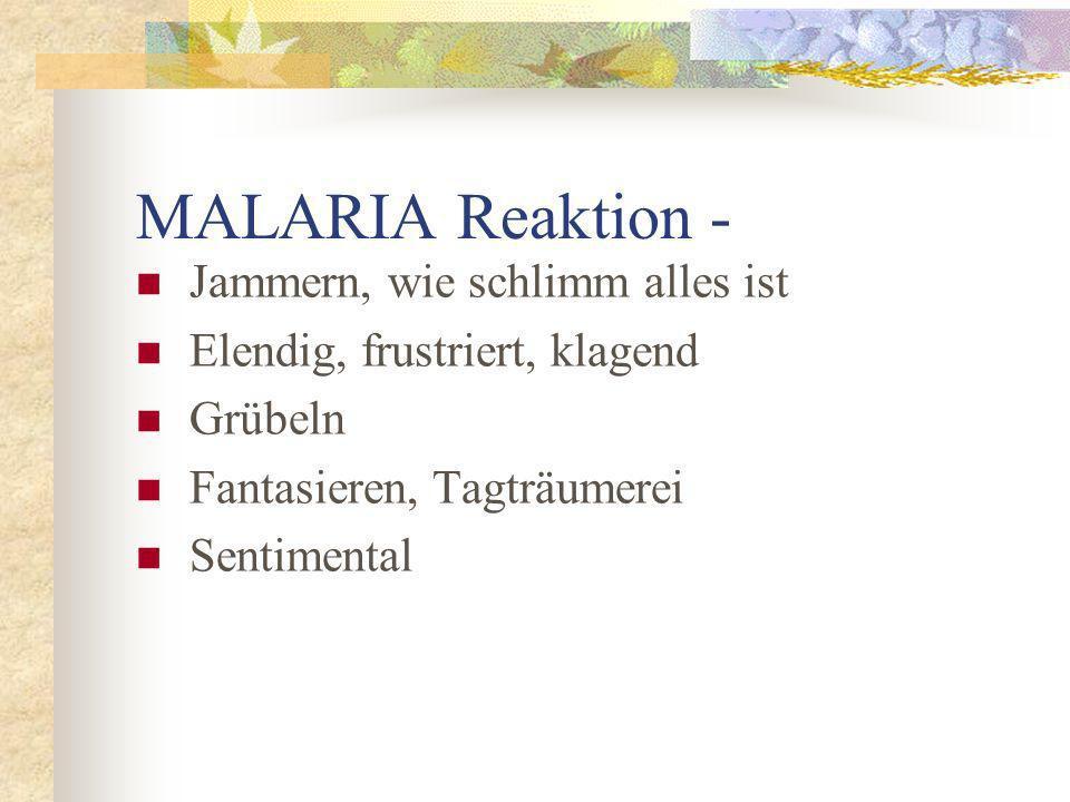 MALARIA Reaktion - Jammern, wie schlimm alles ist Elendig, frustriert, klagend Grübeln Fantasieren, Tagträumerei Sentimental