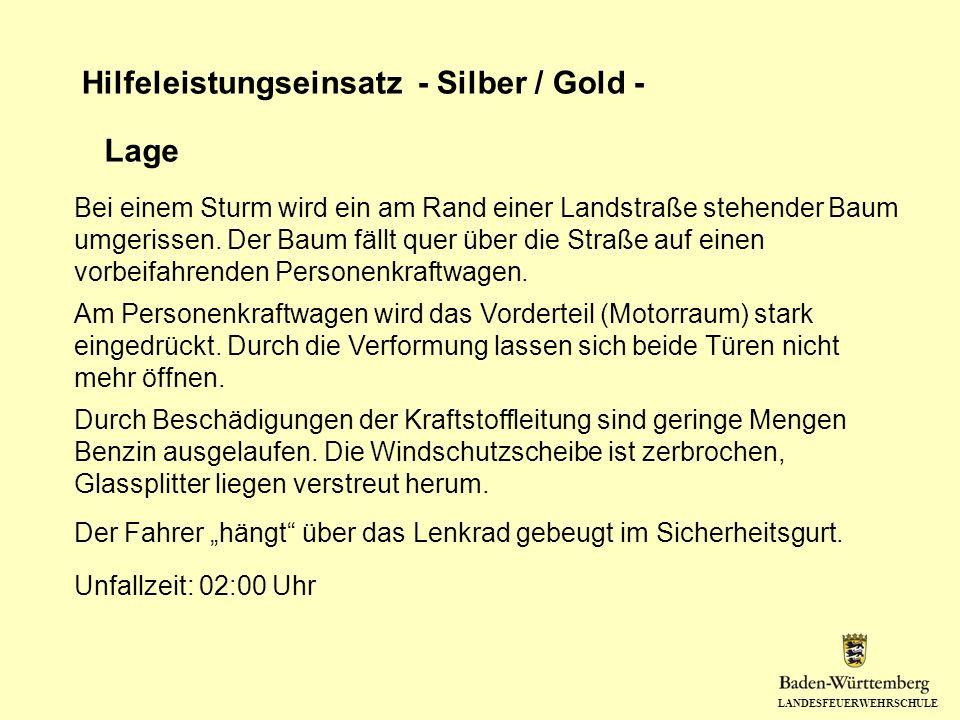 LANDESFEUERWEHRSCHULE Hilfeleistungseinsatz - Silber / Gold - Lage Bei einem Sturm wird ein am Rand einer Landstraße stehender Baum umgerissen. Der Ba