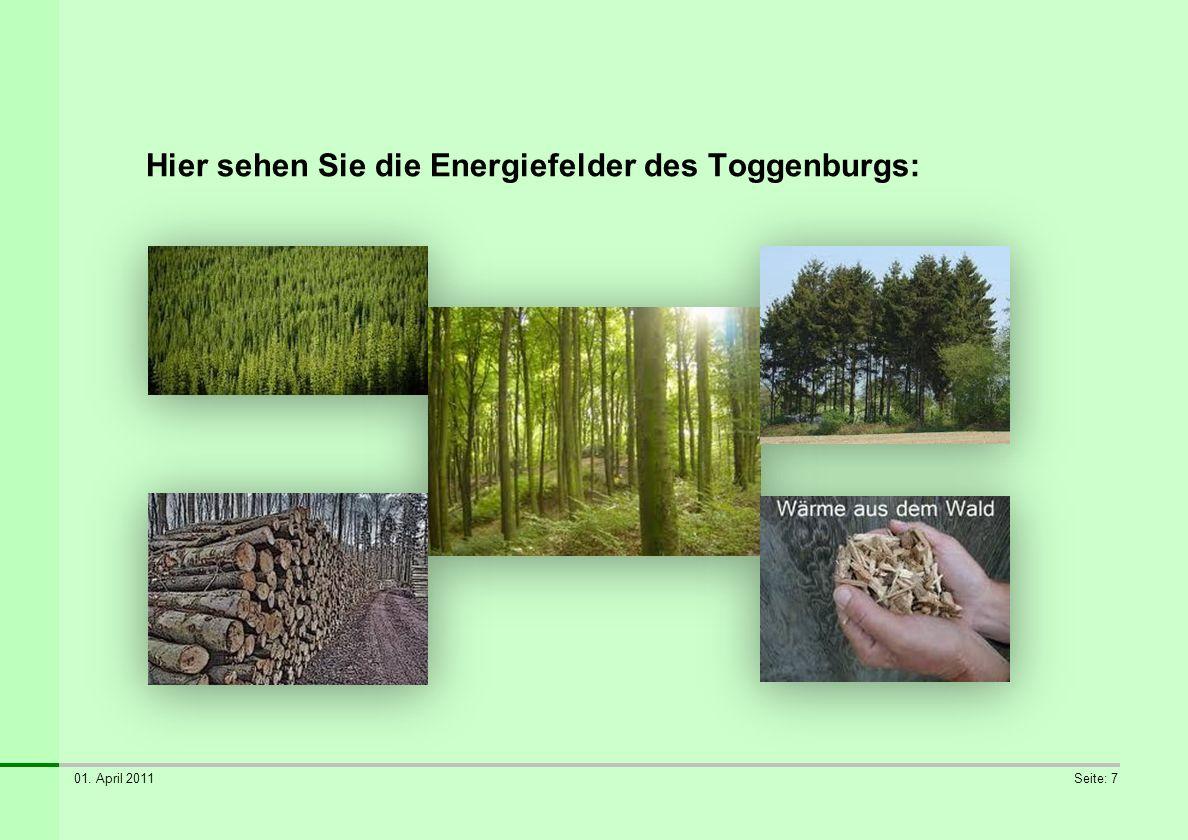 01. April 2011Seite: 7 Hier sehen Sie die Energiefelder des Toggenburgs: