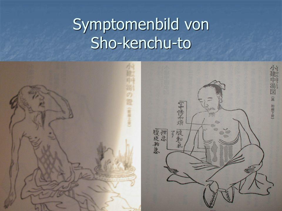 Symptomenbild von Sho-kenchu-to