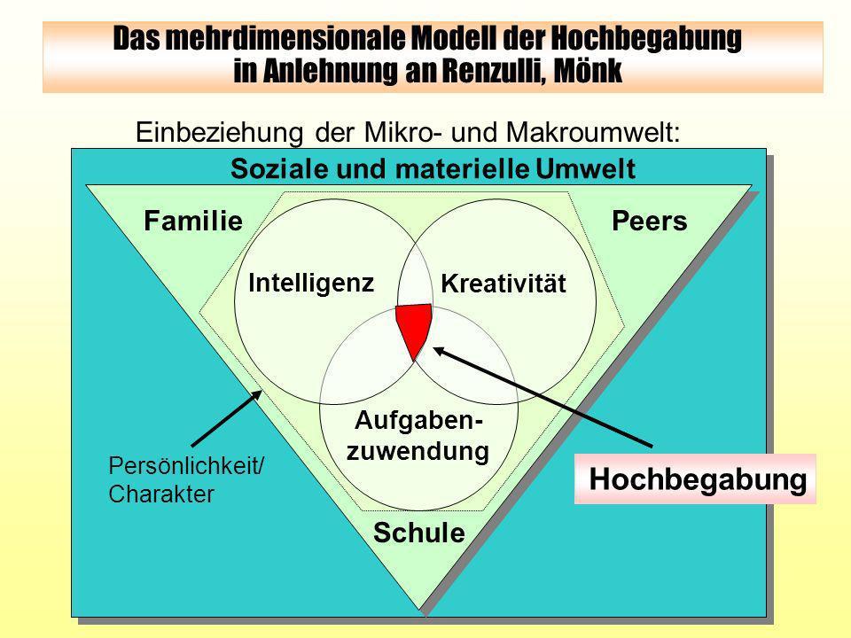 Soziale und materielle Umwelt Einbeziehung der Mikro- und Makroumwelt: überdurch- schnittliche Fähigkeiten Aufgaben- engagement Kreativität Hochbegabu