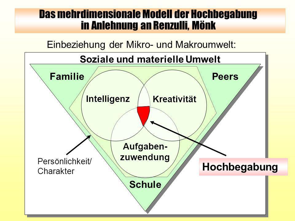 Soziale und materielle Umwelt Einbeziehung der Mikro- und Makroumwelt: FamiliePeers Schule Persönlichkeit/ Charakter Das mehrdimensionale Modell der H