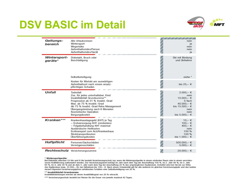 DSV BASIC im Detail