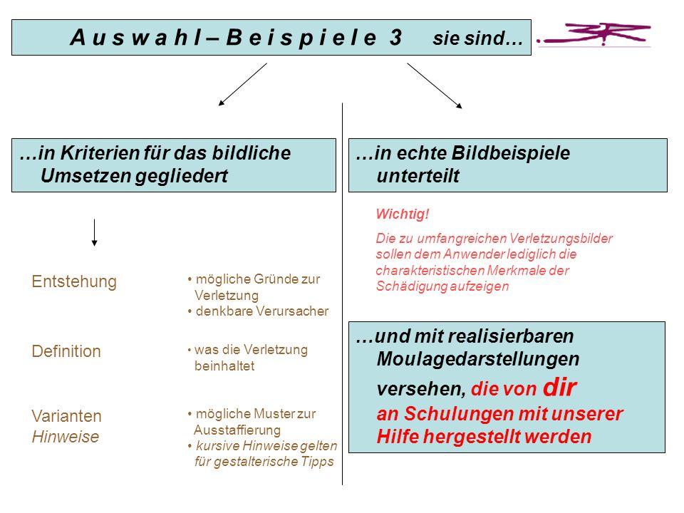 Definition Varianten Hinweise …in echte Bildbeispiele unterteilt …in Kriterien für das bildliche Umsetzen gegliedert Entstehung A u s w a h l – B e i