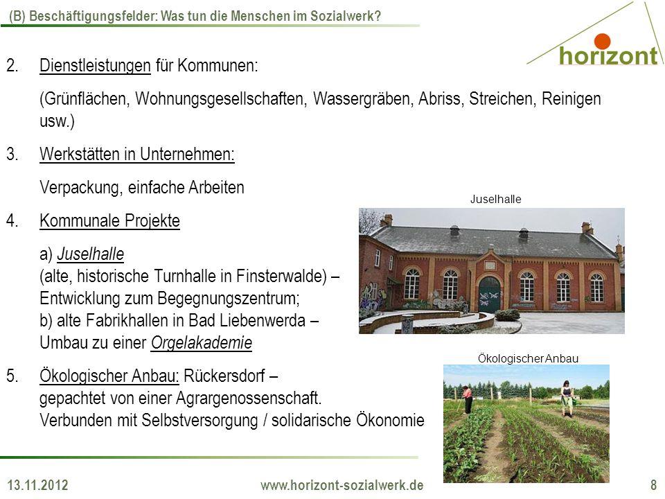 13.11.2012 www.horizont-sozialwerk.de 8 (B) Beschäftigungsfelder: Was tun die Menschen im Sozialwerk? 2.Dienstleistungen für Kommunen: (Grünflächen, W