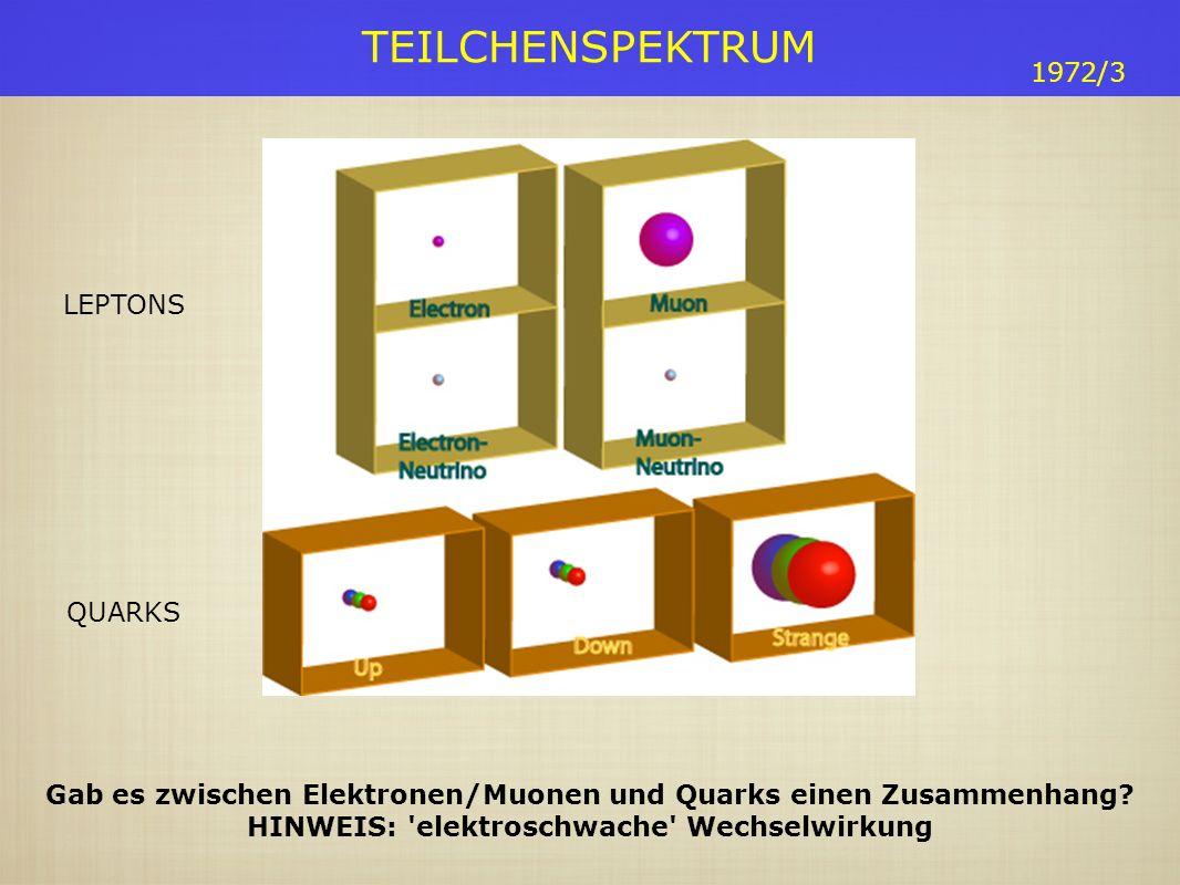 TEILCHENSPEKTRUM 1972/3 Gab es zwischen Elektronen/Muonen und Quarks einen Zusammenhang.