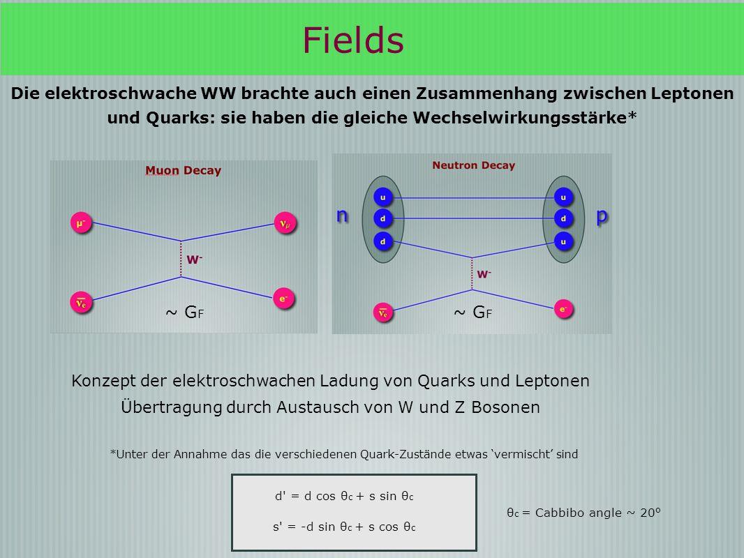 Fields Die elektroschwache WW brachte auch einen Zusammenhang zwischen Leptonen und Quarks: sie haben die gleiche Wechselwirkungsstärke* ~ G F Konzept der elektroschwachen Ladung von Quarks und Leptonen Übertragung durch Austausch von W und Z Bosonen *Unter der Annahme das die verschiedenen Quark-Zustände etwas vermischt sind d = d cos θ c + s sin θ c s = -d sin θ c + s cos θ c θ c = Cabbibo angle ~ 20 o