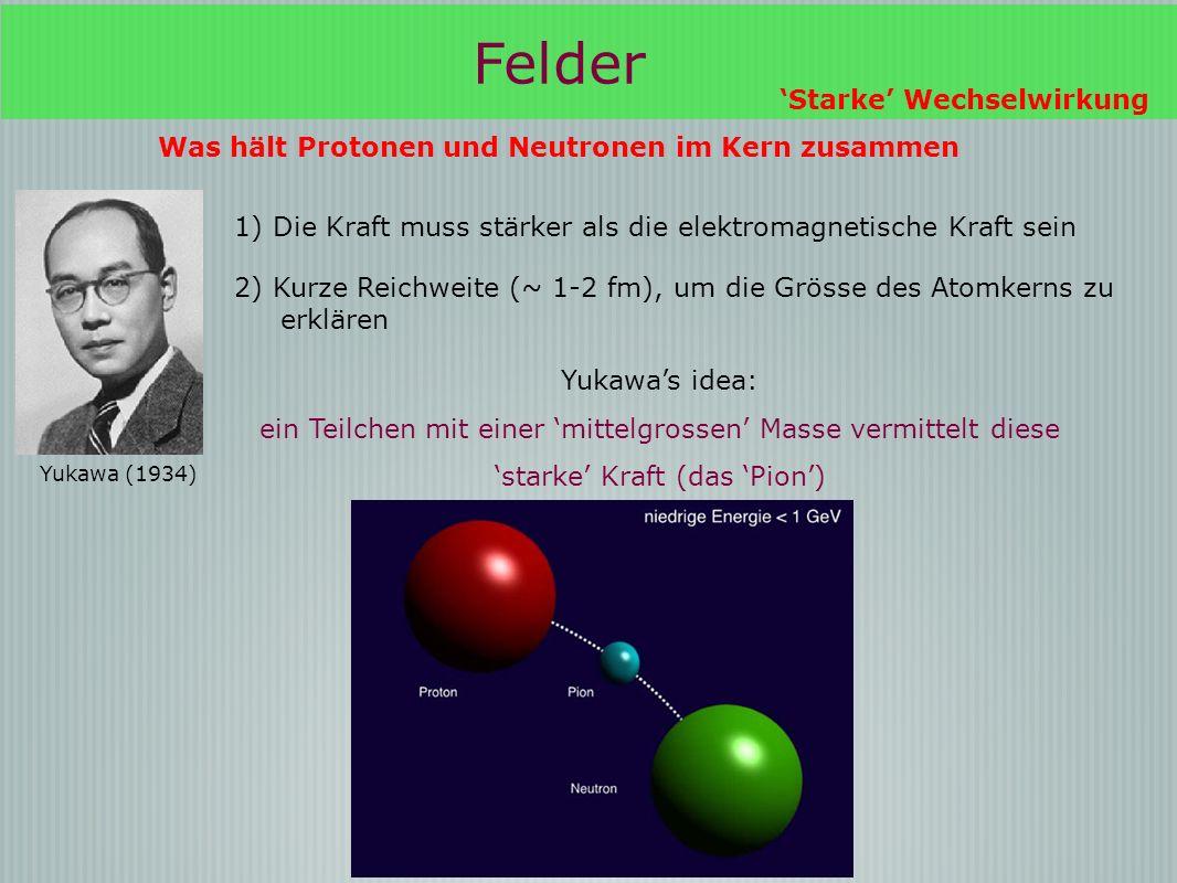 Felder Starke Wechselwirkung Was hält Protonen und Neutronen im Kern zusammen Yukawa (1934) Yukawas idea: ein Teilchen mit einer mittelgrossen Masse vermittelt diese starke Kraft (das Pion) 1) Die Kraft muss stärker als die elektromagnetische Kraft sein 2) Kurze Reichweite (~ 1-2 fm), um die Grösse des Atomkerns zu erklären