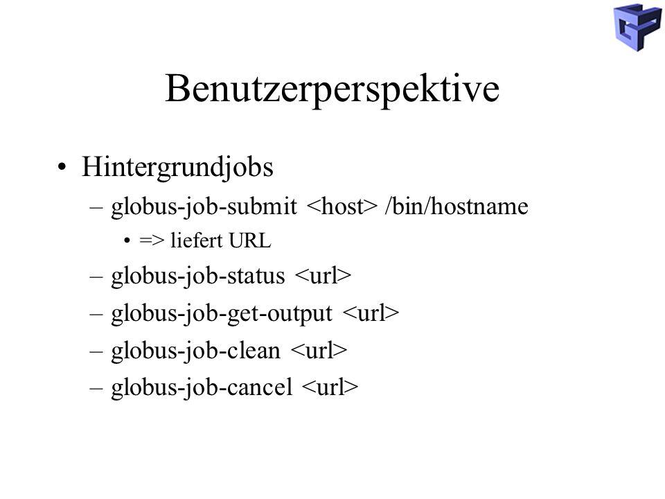 Benutzerperspektive Hintergrundjobs –globus-job-submit /bin/hostname => liefert URL –globus-job-status –globus-job-get-output –globus-job-clean –globus-job-cancel