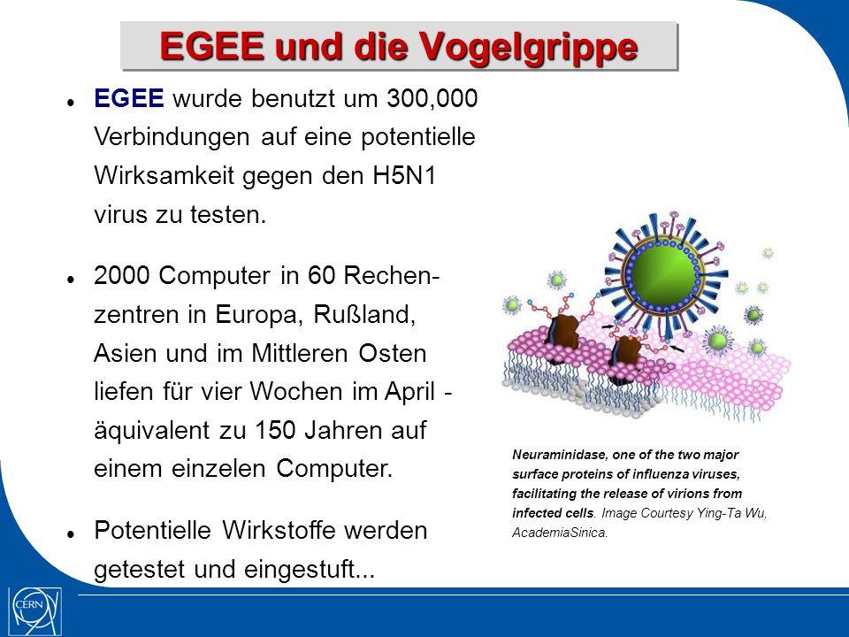 EGEE und die Vogelgrippe EGEE wurde benutzt um 300,000 Verbindungen auf eine potentielle Wirksamkeit gegen den H5N1 virus zu testen.