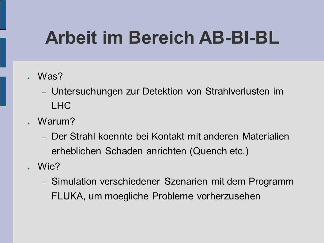 Arbeit im Bereich AB-BI-BL Was.– Untersuchungen zur Detektion von Strahlverlusten im LHC Warum.