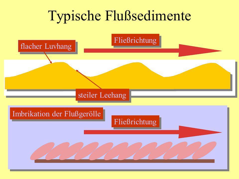 Imbrikation der Flußgerölle Typische Flußsedimente flacher Luvhang Fließrichtung steiler Leehang