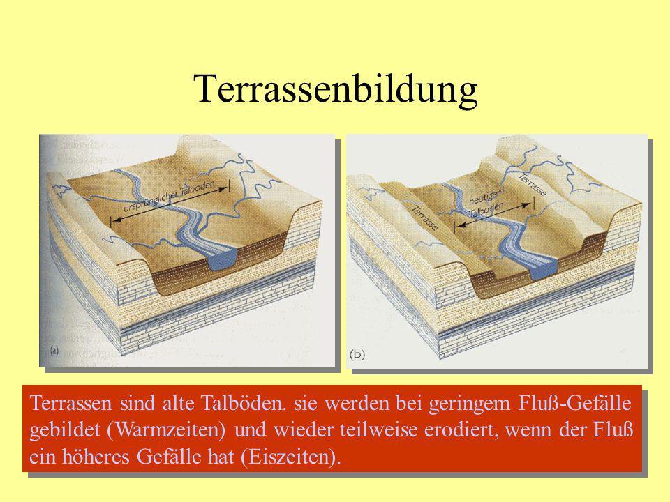 Terrassenbildung Terrassen sind alte Talböden. sie werden bei geringem Fluß-Gefälle gebildet (Warmzeiten) und wieder teilweise erodiert, wenn der Fluß