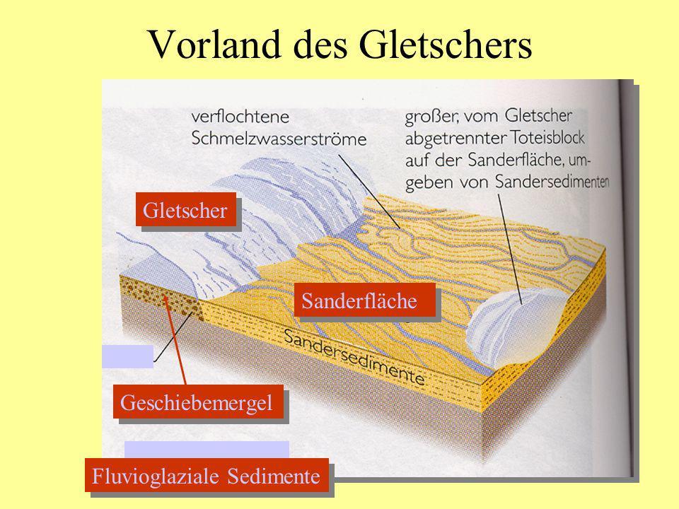 Vorland des Gletschers Gletscher Geschiebemergel Sanderfläche Fluvioglaziale Sedimente