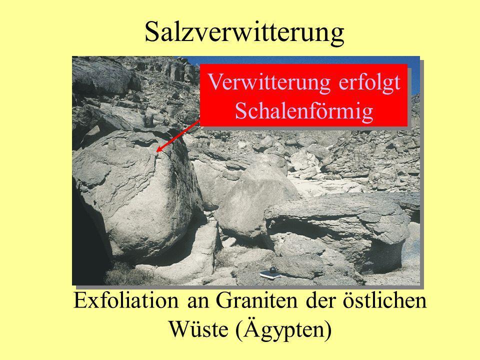 Salzverwitterung Exfoliation an Graniten der östlichen Wüste (Ägypten) Verwitterung erfolgt Schalenförmig Verwitterung erfolgt Schalenförmig