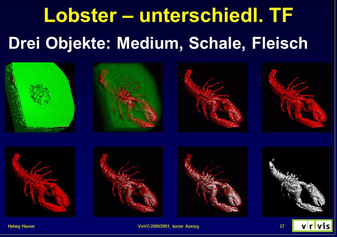 Helwig Hauser 27VisVO 2000/2001, kurzer Auszug Lobster – unterschiedl. TF Drei Objekte: Medium, Schale, Fleisch