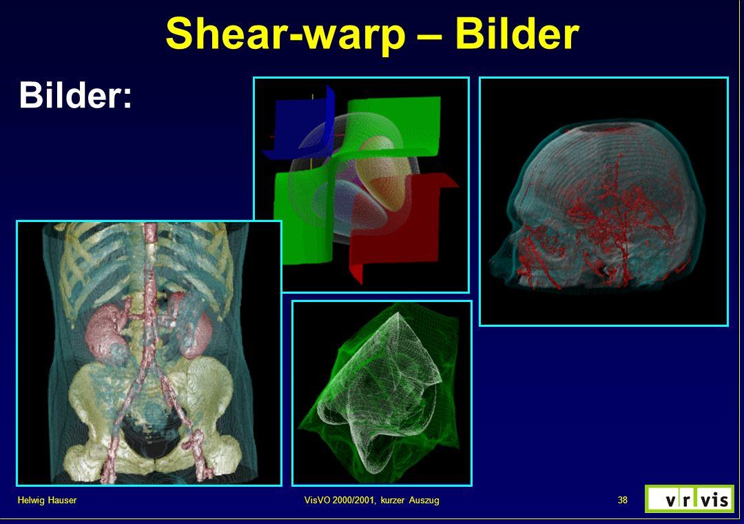 Helwig Hauser 38VisVO 2000/2001, kurzer Auszug Shear-warp – Bilder Bilder: