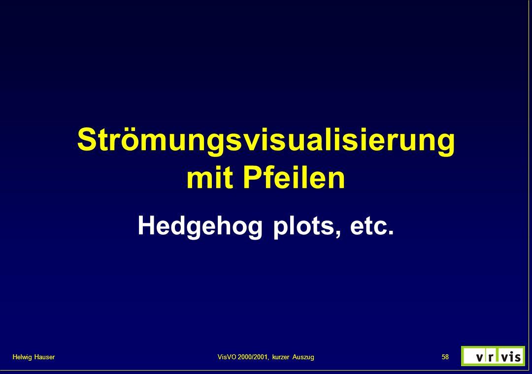 Helwig Hauser 58VisVO 2000/2001, kurzer Auszug Strömungsvisualisierung mit Pfeilen Hedgehog plots, etc.