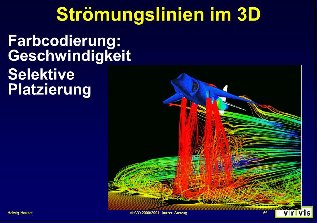 Helwig Hauser 65VisVO 2000/2001, kurzer Auszug Strömungslinien im 3D Farbcodierung: Geschwindigkeit Selektive Platzierung