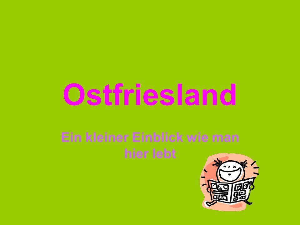 Ostfriesland Ein kleiner Einblick wie man hier lebt