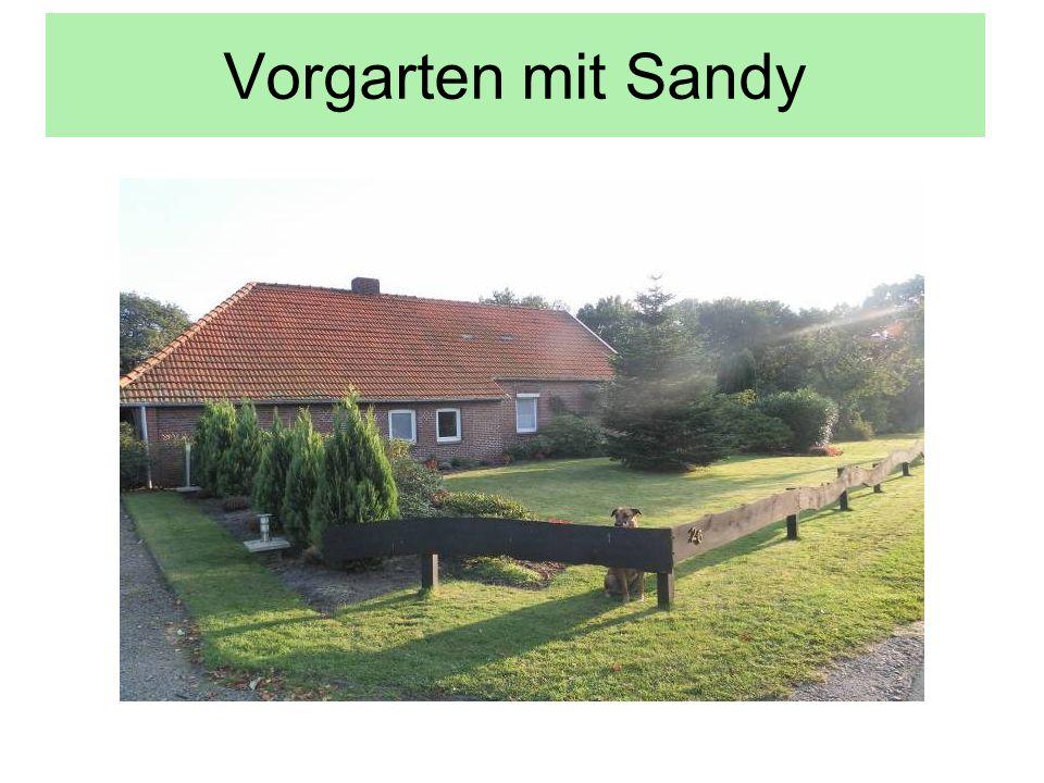 Vorgarten mit Sandy
