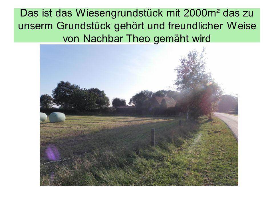 Das ist das Wiesengrundstück mit 2000m² das zu unserm Grundstück gehört und freundlicher Weise von Nachbar Theo gemäht wird