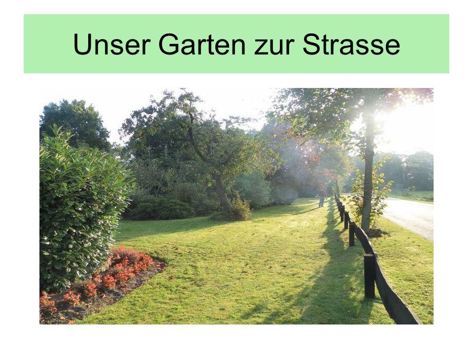 Unser Garten zur Strasse