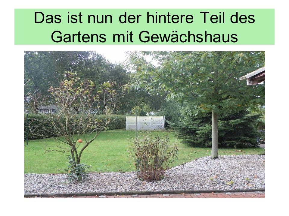 Das ist nun der hintere Teil des Gartens mit Gewächshaus