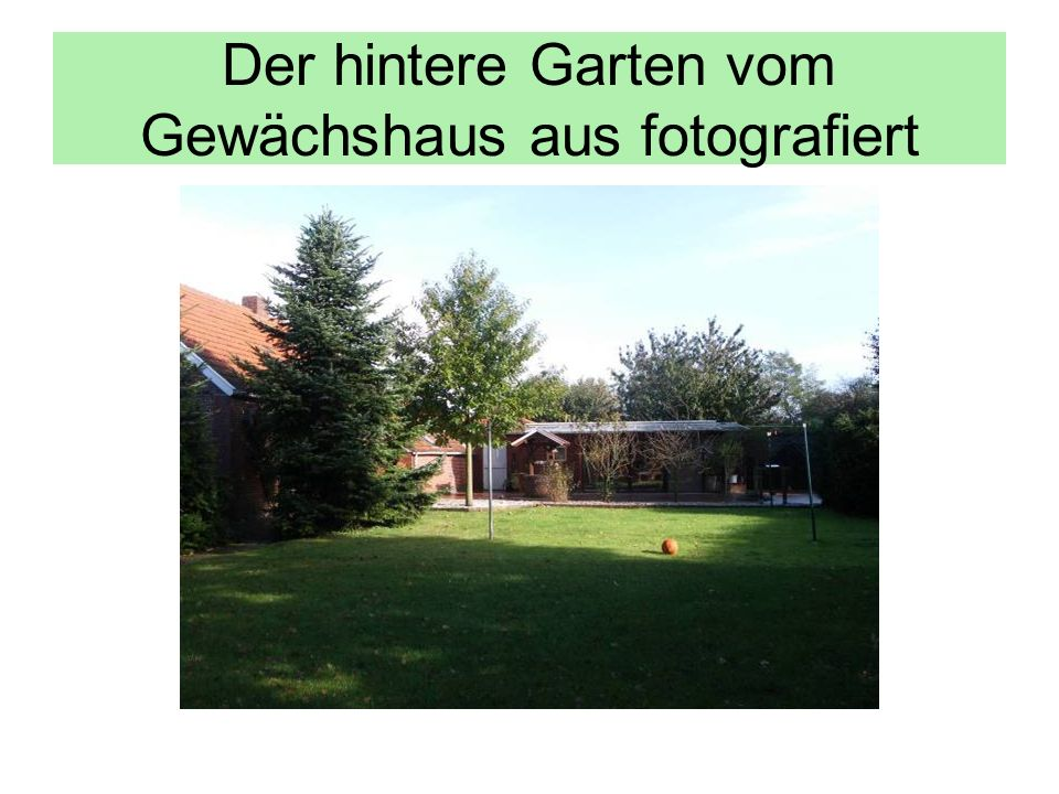 Der hintere Garten vom Gewächshaus aus fotografiert