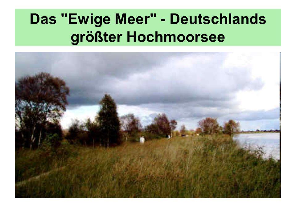 Das Landschaftsbild wird von alten Windmühlen geprägt