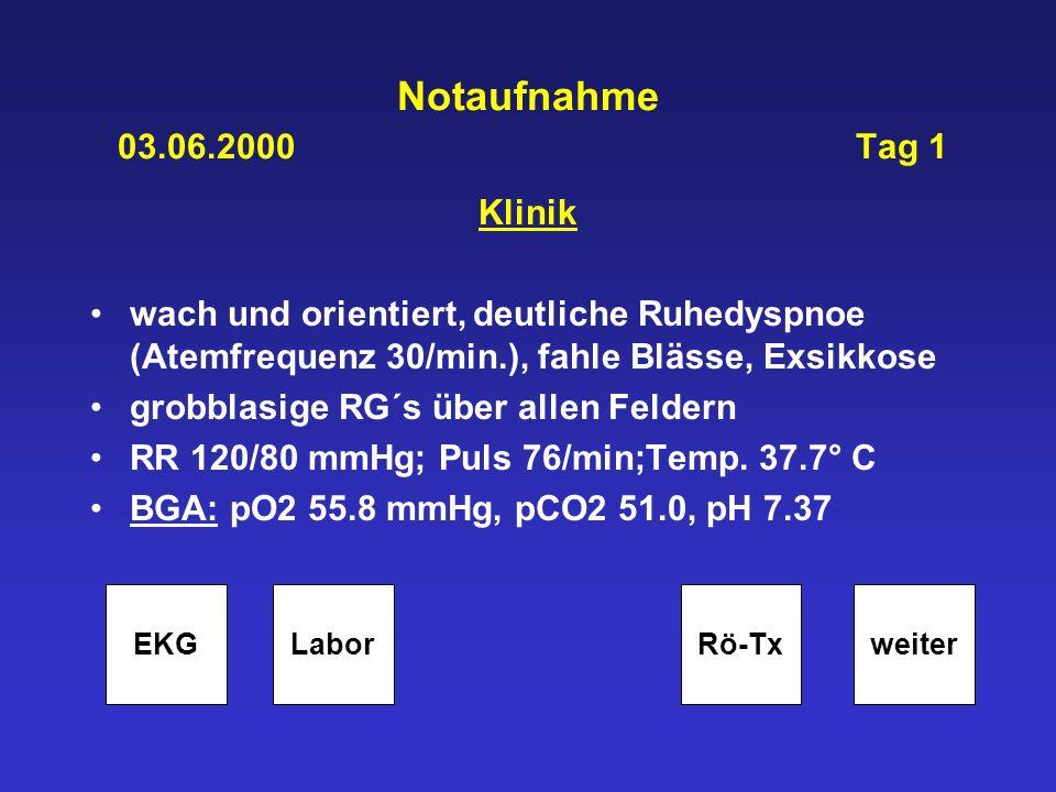 Notaufnahme 03.06.2000 Tag 1 Klinik wach und orientiert, deutliche Ruhedyspnoe (Atemfrequenz 30/min.), fahle Blässe, Exsikkose grobblasige RG´s über a