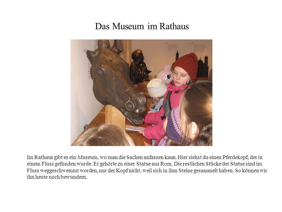 Das Museum im Rathaus Im Rathaus gibt es ein Museum, wo man die Sachen anfassen kann. Hier siehst du einen Pferdekopf, der in einem Fluss gefunden wur