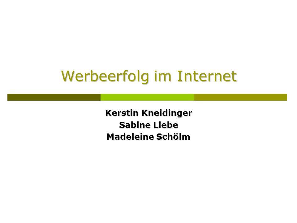 Werbeerfolg im Internet Kerstin Kneidinger Sabine Liebe Madeleine Schölm