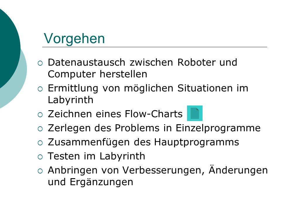 Vorgehen Datenaustausch zwischen Roboter und Computer herstellen Ermittlung von möglichen Situationen im Labyrinth Zeichnen eines Flow-Charts Zerlegen