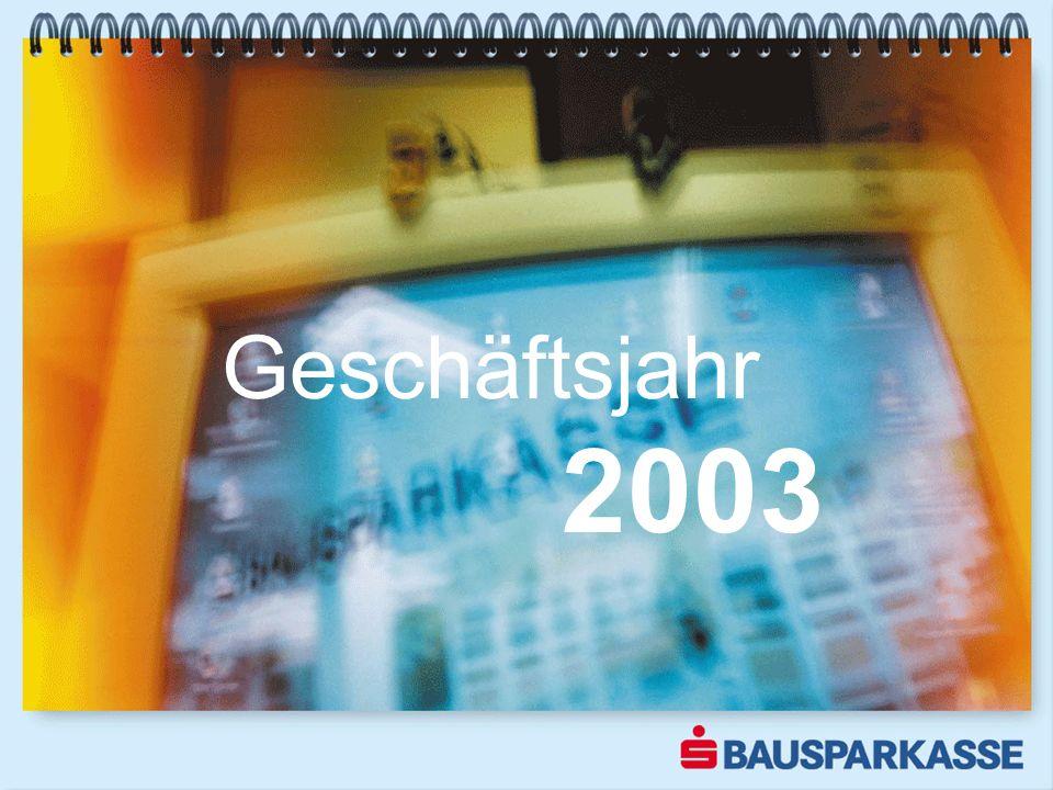 Geschäftsjahr 2003