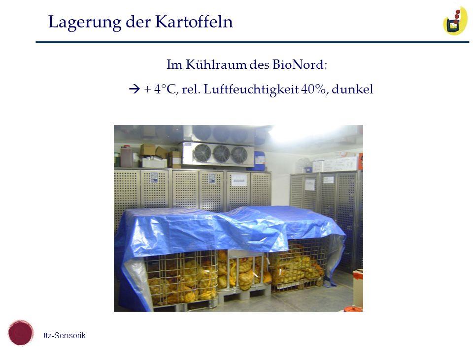 ttz-Sensorik Lagerung der Kartoffeln Im Kühlraum des BioNord: + 4°C, rel. Luftfeuchtigkeit 40%, dunkel