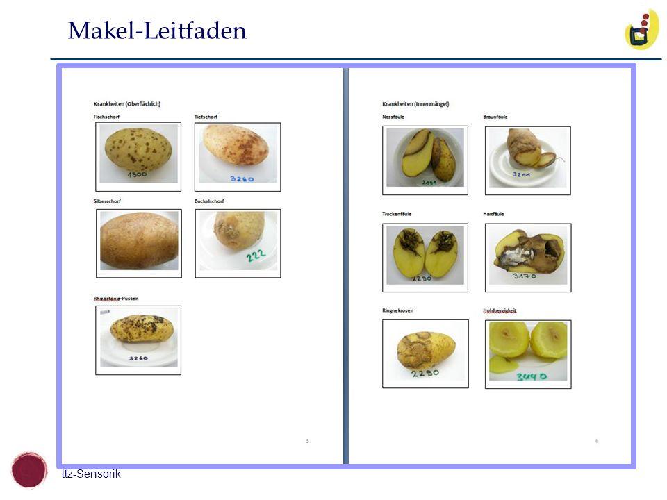 ttz-Sensorik Makel-Leitfaden